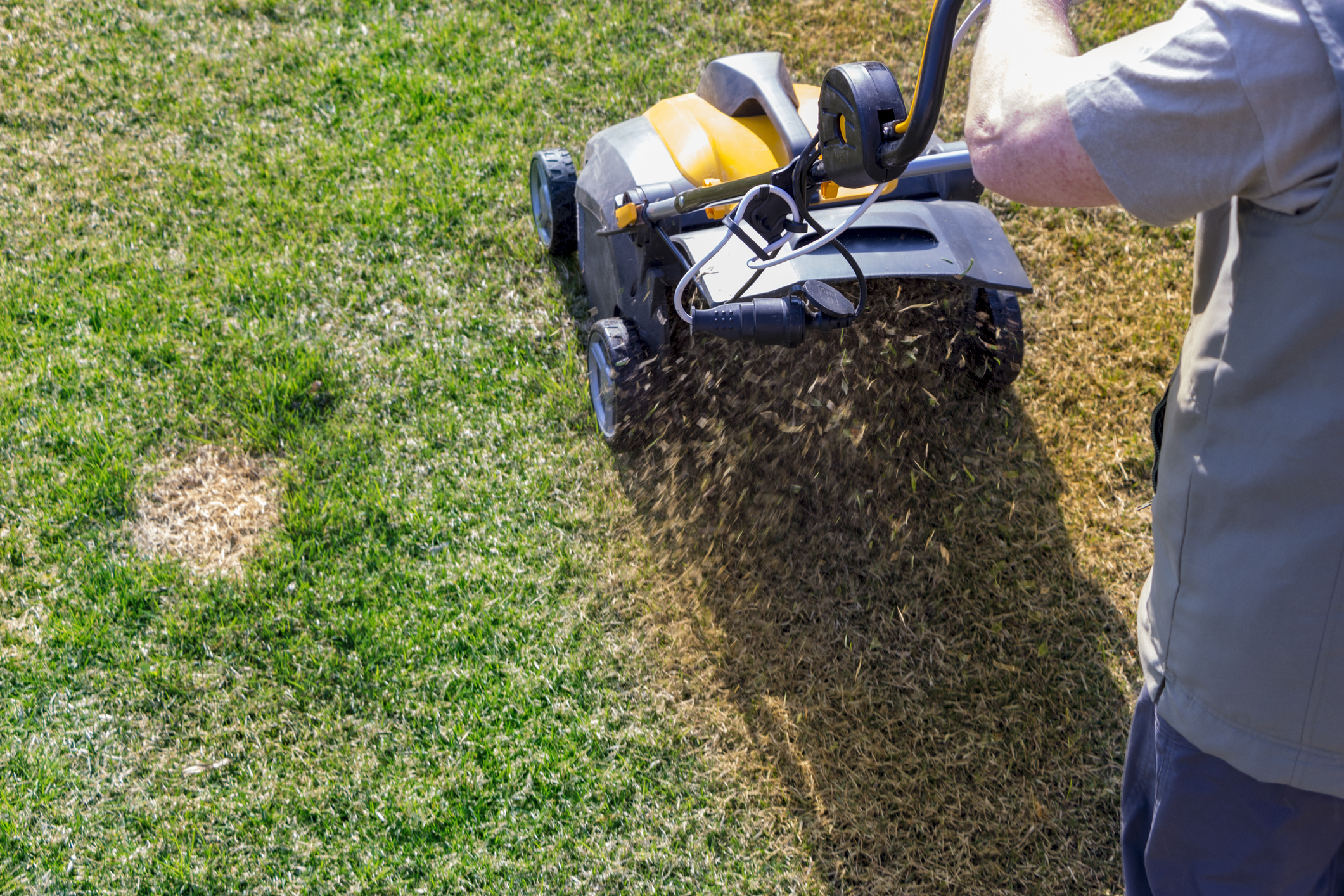 Lawn Aeration South Hills