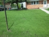 New Lawn Installation Services South Hills