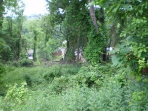 Lot Clearing Services Pittsburgh