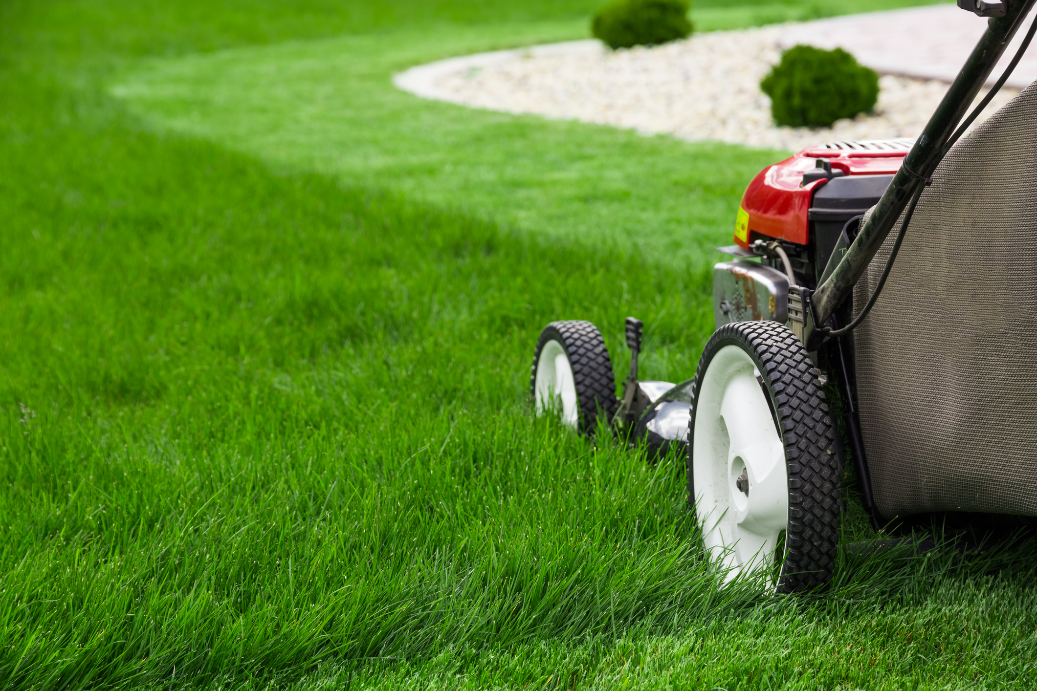 Lawn Care South Hills